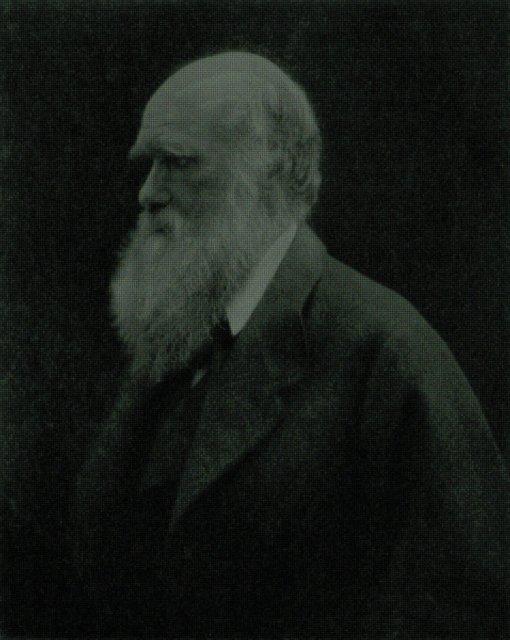 charles darwin pdb mosaic